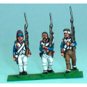 Fusiliers without shako